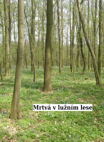 Mrtva_v_luznim_lese
